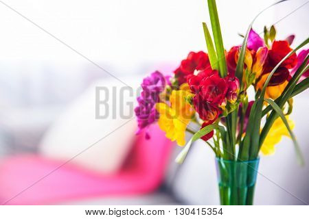 Beautiful freesia flowers on blurred background