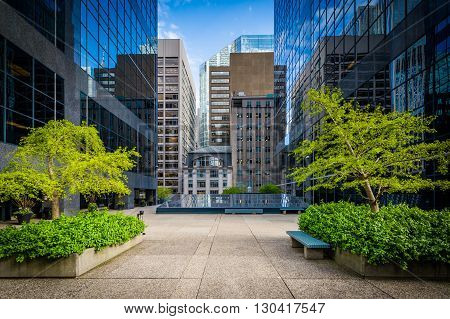 Courtyard And Modern Buildings In Downtown Toronto, Ontario.