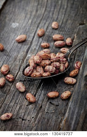 Cranberry beans on spoon, on wooden surface.