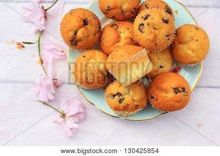 Rustic wooden breakfast background with bluberries fresh scones and blooming cherry flowers