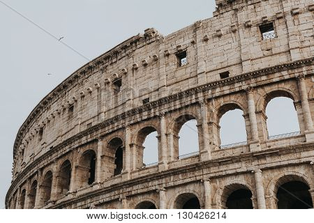 Coliseum in Rome, Italy. Close up view.