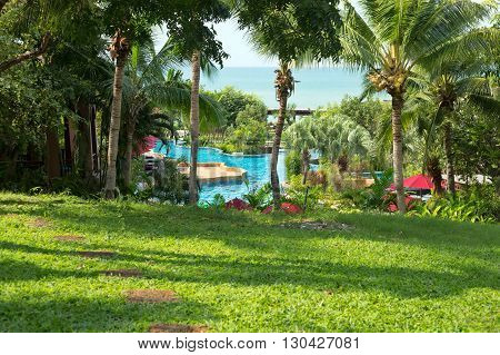 Green grass area with palm trees swimming pool at east coast of Thailand.