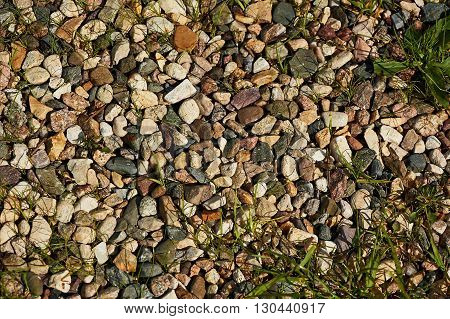 green grass with stone, grass with rock, Pebble stones with Grass, background
