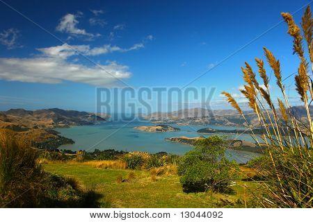 Lyttelton Harbour New Zealand