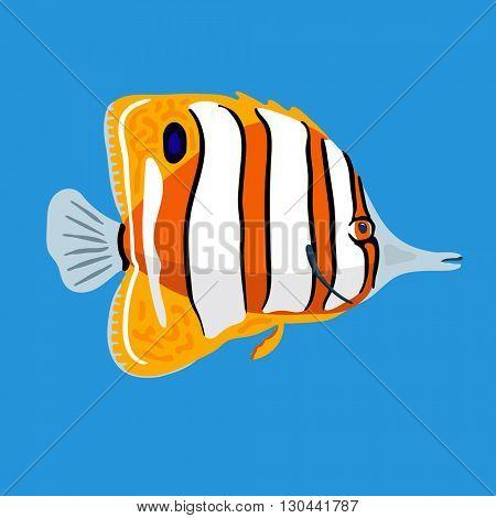 Tropical ocean butterfly fish, vector illustration