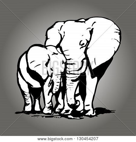 A graphic image of two elephants. The mother elephant hugging the trunk. Abstract drawing elephant on grey background. Vector illustration