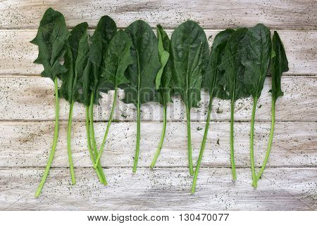 high-angle shot of some different raw spinach leaves on a rustic white table