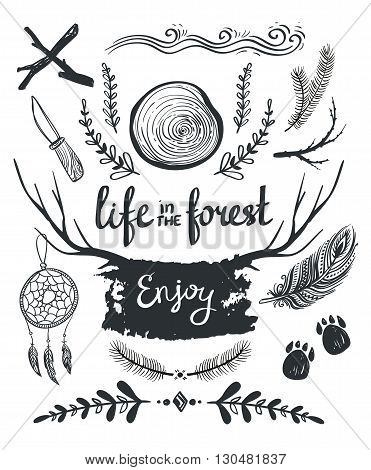 Set of design elements and clip art themed around life in the forest.