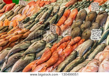London United Kingdom - May 14 2016: Brixton Village and Brixton Station Road Market. Colorful and multicultural community market run by local traders in South London. Fish counter