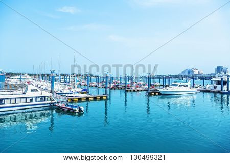 many yachts docked at the pier,qingdao china.