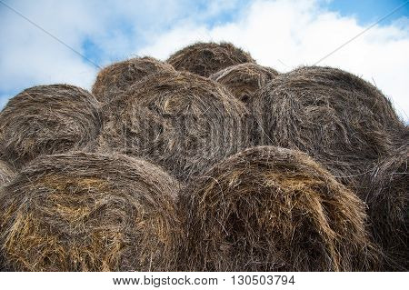 Straw haystacks piled together on each other