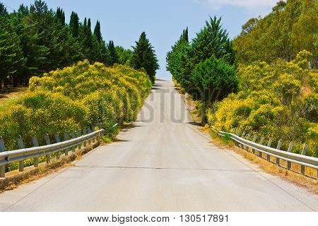 Stright Asphalt Road between Hills Covered with Bushes in Sicily