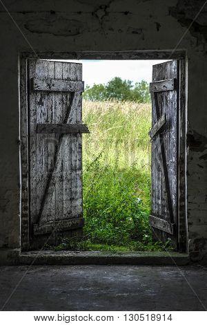 Open wood door in abandoned house. Green sunny meadow outside.