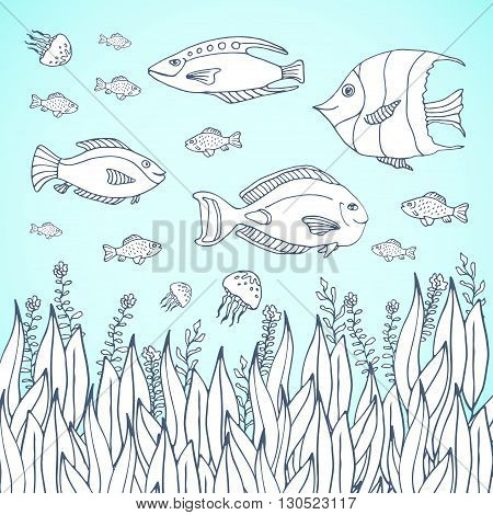 Adult coloring book page. Kids coloring page with aquarium fishes. Sea life with fish characters. Kids coloring page with aquarium