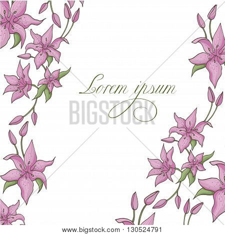 Pink lily isolated on a white background. Card with blooming lily. Vector illustration.