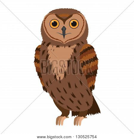 Owl. Forest bird. Vector illustration. Object isolated on white background.