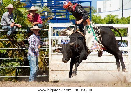 Cowboy's Riding Dangerous Bull On Australia Day Rodeo