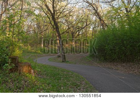 winding paved trail through forest at battle creek regional park in saint paul minnesota