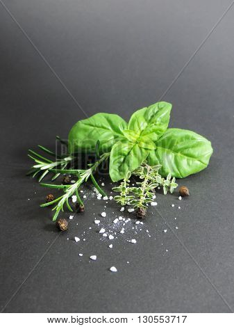 Fresh herbs on black with copy space