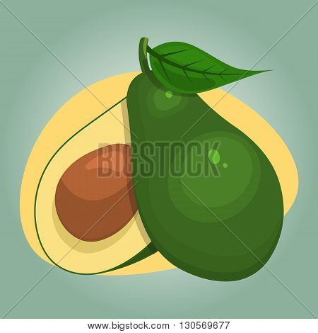Avocado colorful icon. Vector icon of avocado and cut avocado half