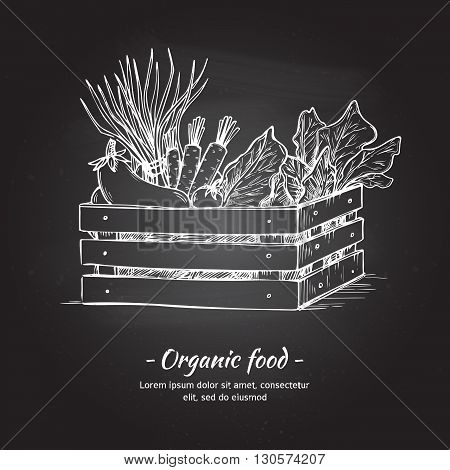 Hand drawn vector illustration -Fresh vegetables. Supermarket. Grocery store. Organic and vegan food. Chalk sketch