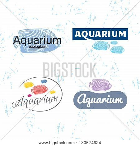 Vector colourful logo set with Emperor angelfish. The fish as main element of logotypes on white background