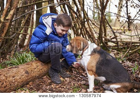 Boy playing with pet dog under a shelter of tree branches