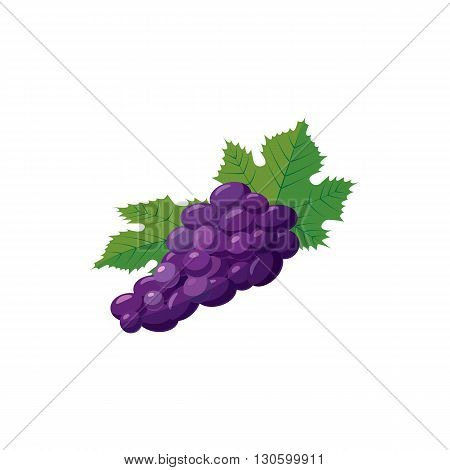 Bunch of blue grapes icon in cartoon style on a white background