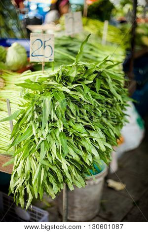 Selection of fresh green sage. Traditional thai market.