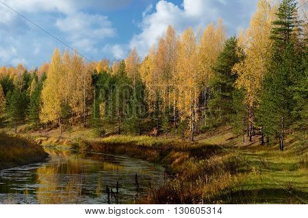 Colorful autumn on calm river in sunny morning