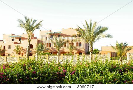 Arabian Traditional  House and Green Palms at Sun Light.