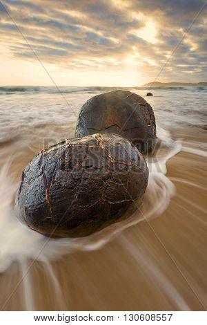 A portrait shot of a Moeraki boulder.