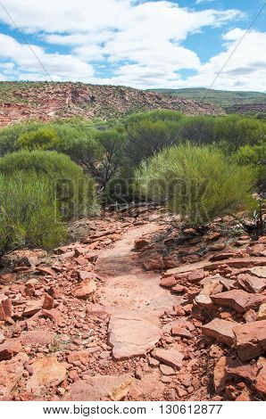 Hiking path down to the Murchison River gorge through red sandstone and native vegetation in the Kalbarri National Park in Kalbarri, Western Australia.