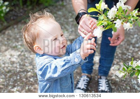 beautiful playful toddler boy touching blooming flowers enjoying springtime at the park with his mother