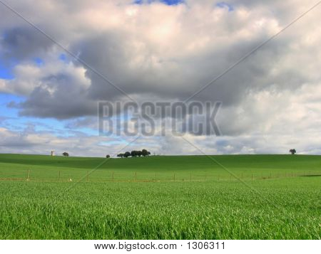 Landscape Of The Plain