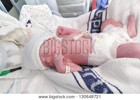 Newborn Boy Baby Immediately After Caesarean Section
