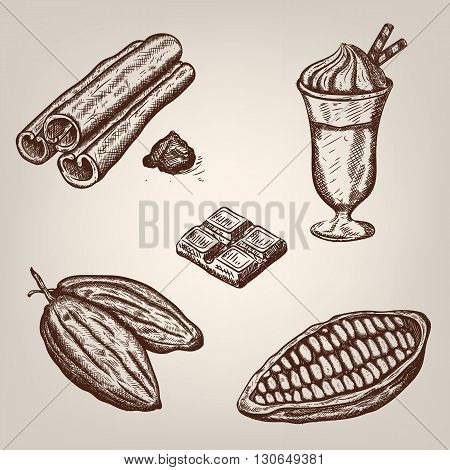 Hand drawing illustration of cacao beans, chocolate, cup of hot chocolate, cinnamon. Vector illustration