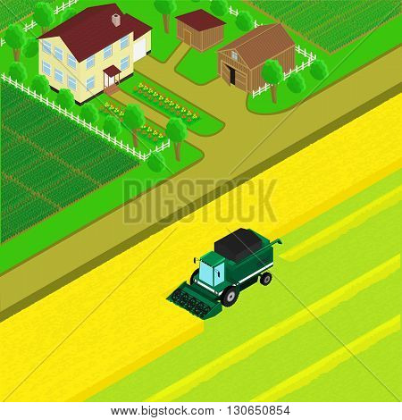 vector illustration. The yard of the farm village road combine harvest the fields. Isometric