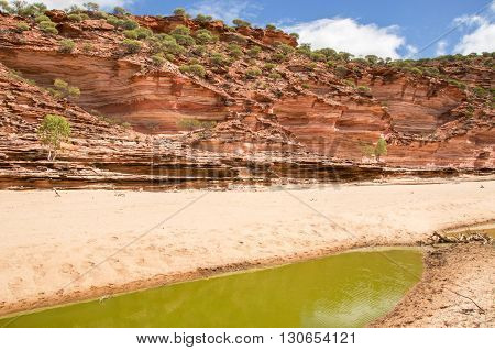 Stunning red and white banded tumblagooda sandstone cliffs in the valley of the Murchison River gorge in Kalbarri National Park with native flora under a blue sky with clouds in Western Australia.