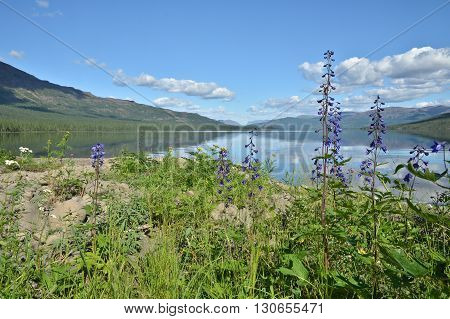 Lake Nakomaken on the Putorana plateau. Summer landscape mountain lake in Siberia.
