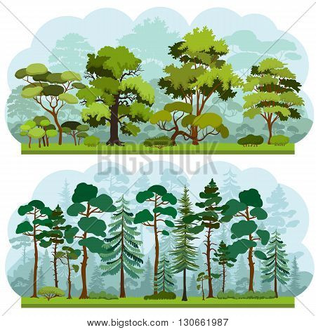 Set of two types of forest landscapes - deciduous and coniferous. Silhouettes of trees and bushes. Forest background. Vector illustration.