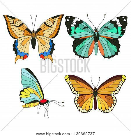 Set of colorful butterflies isolated on white background. Vector illustration