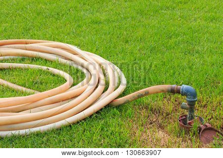 White Rubber Tube On The Grass Of Urban Park. Faucets Of Lawn Care System Within The Park.