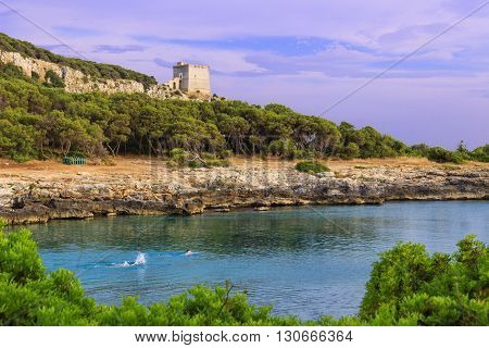 Salento coast. Bay Porto Selvaggio:in the background Dell'Alto watchtower.ITALY (Apulia).