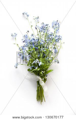 Forget-me-not blue forest flowers bouquet on white background