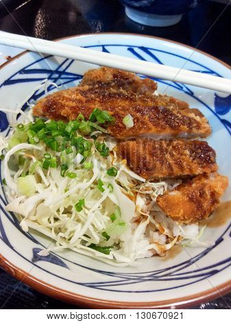 close up hot tonkatsu - japan pork fried food