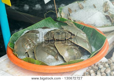 Bangkok Thailand - December 8 2015 : Thai exotic food in street food market with seafood shellfish and horseshoe crab. Like the charming people exotic foods greets you on almost every corner in Thailand.