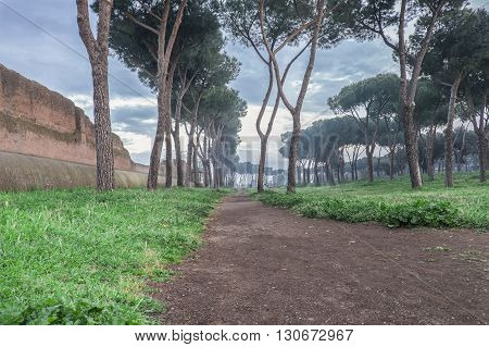 Italy, Rome, Acquedotto Claudio - Early morning at the Park of the Aqueducts and the fog is slowly lifting