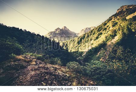 Landscape Mountains and forest in Abkhazia Summer Travel serene scenic morning view