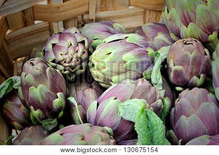 italian raw artichokes in wicker basket macro